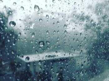 not a rain lover