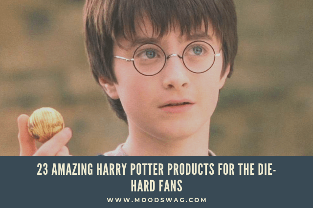23-Amazing-Harry-Potter-products-for-the-die-hard-fans